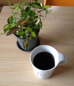 140523coffee